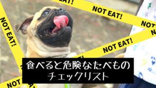 犬が食べると危険なたべものリスト